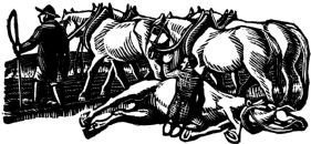 wood-engraving original print: Dead Horse for Four Tales from Hans Andersen